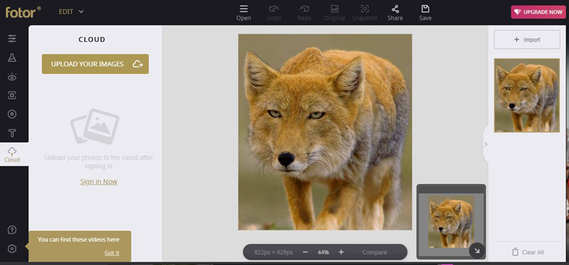 Phần mềm chỉnh ảnh Online Fotor