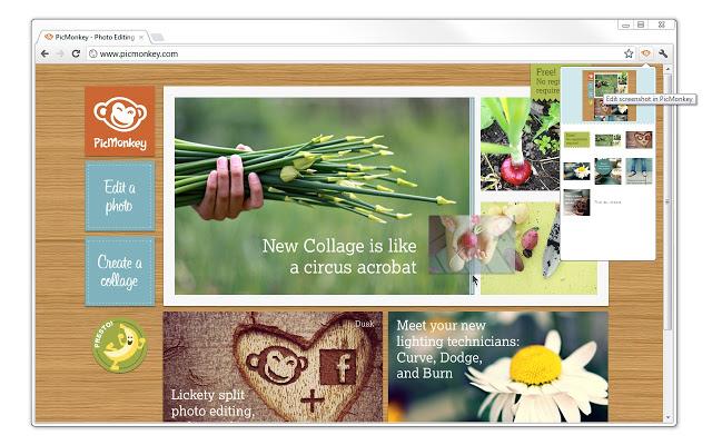 Phần mềm chỉnh ảnh Online Pic Monkey
